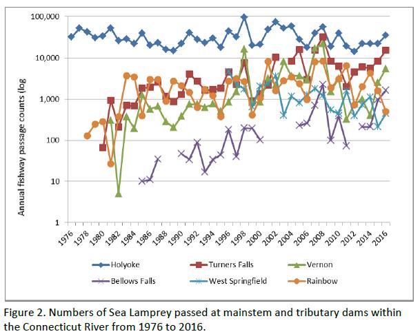 sea lamprey passage at CT river dams