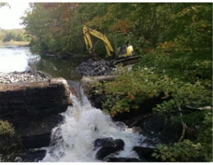 Dam removal on the CT River